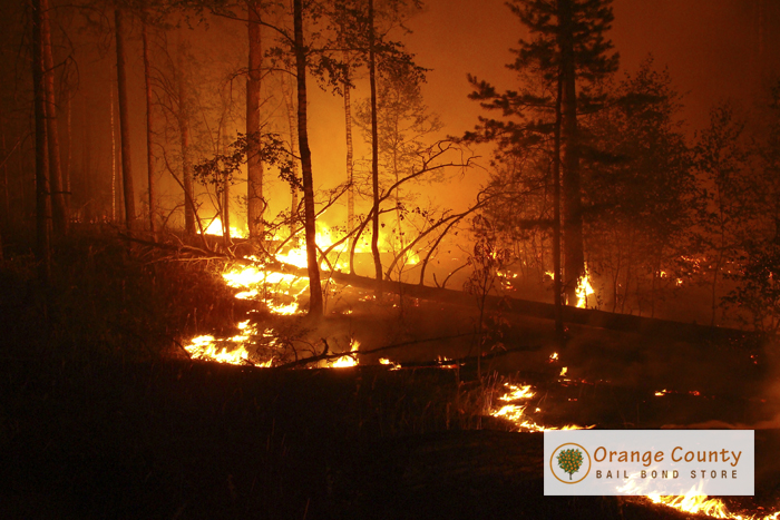 staying-safe-during-californias-wildfire-season